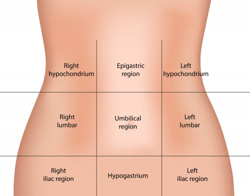 9-Regions-of-the-Abdomen